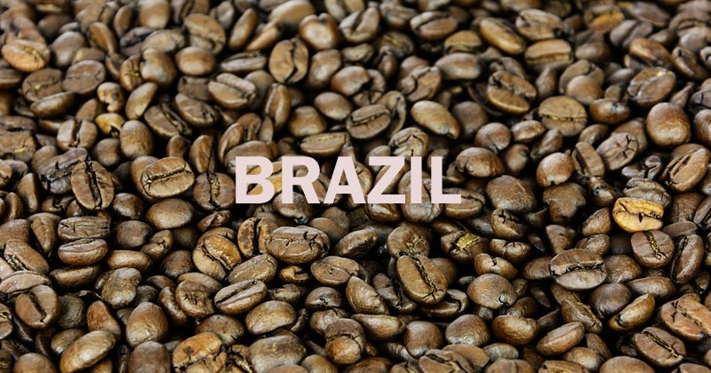 coffee in Brazil