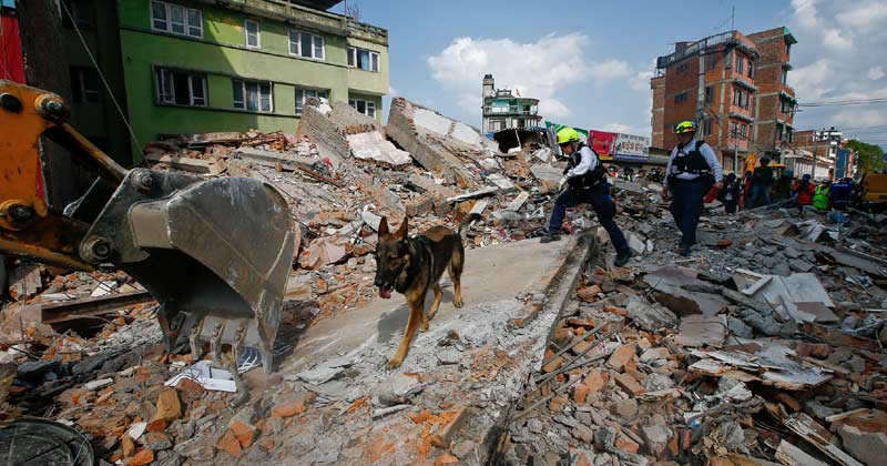 Do animals get an early warning about earthquakes