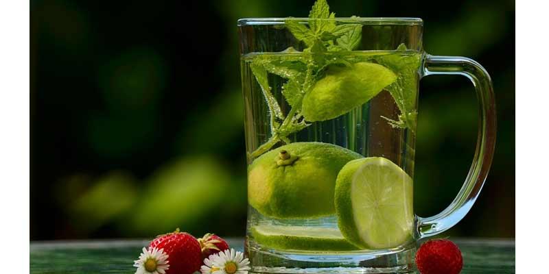 Lemon Water   Zero Calorie Foods