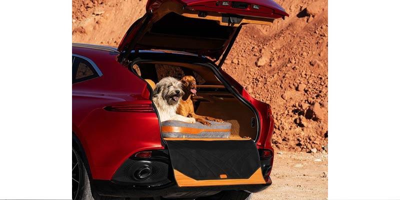 Pet Pack Aston Martin