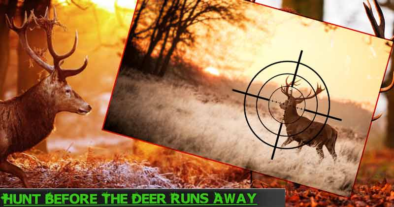 Classic Deer Hunter