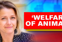 France | Animal rights in France