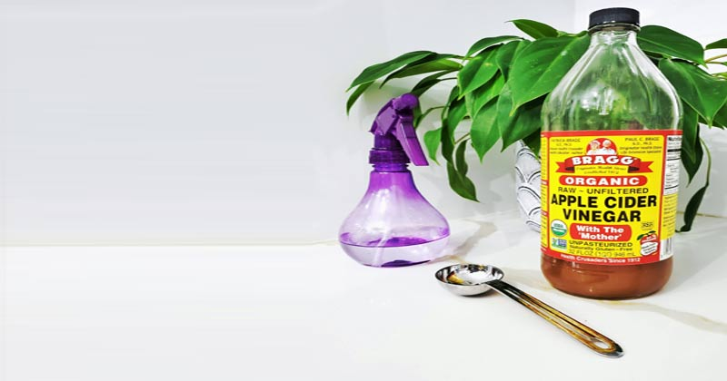 Uses and Benefits of Vinegar