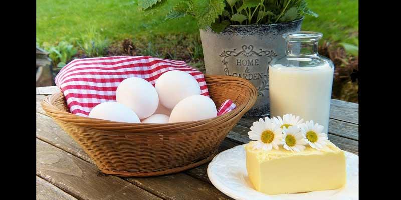 Calcium Rich Food   How to Strengthen Bones