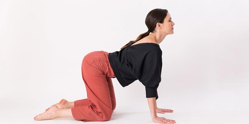 Cat-cow Pose | Yoga for Thyroid