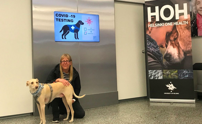 Sniffer dogs for Coronavirus Tests