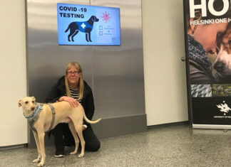 Sniffer Dog Covid Testing Finland