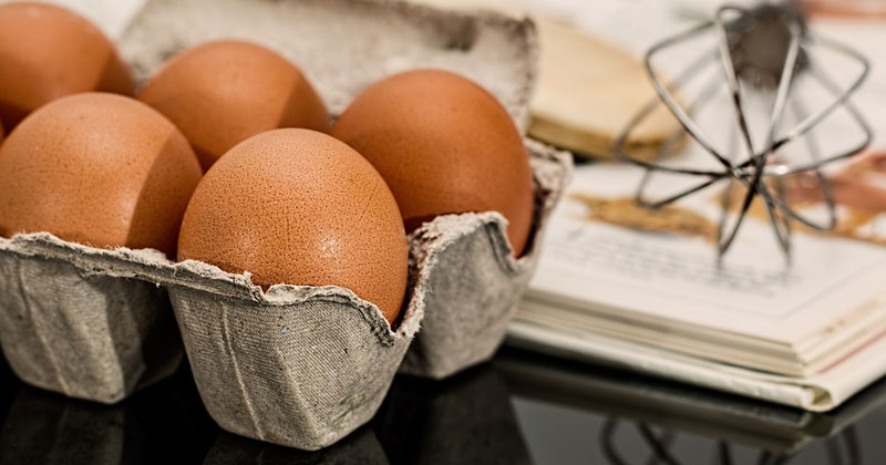 Nutrition Facts for Egg