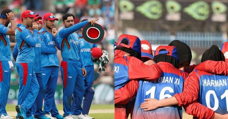 afghanistan cricket board news