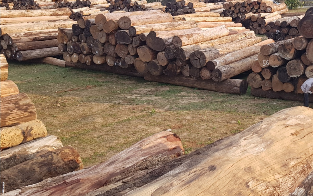 timber trading in Italy